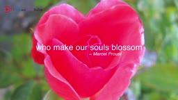I am grateful for - Charming Gardeners!