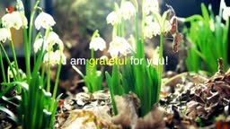 I am grateful - for spring