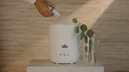 Experience Wellness With All Your Senses | Alo Essential Oils